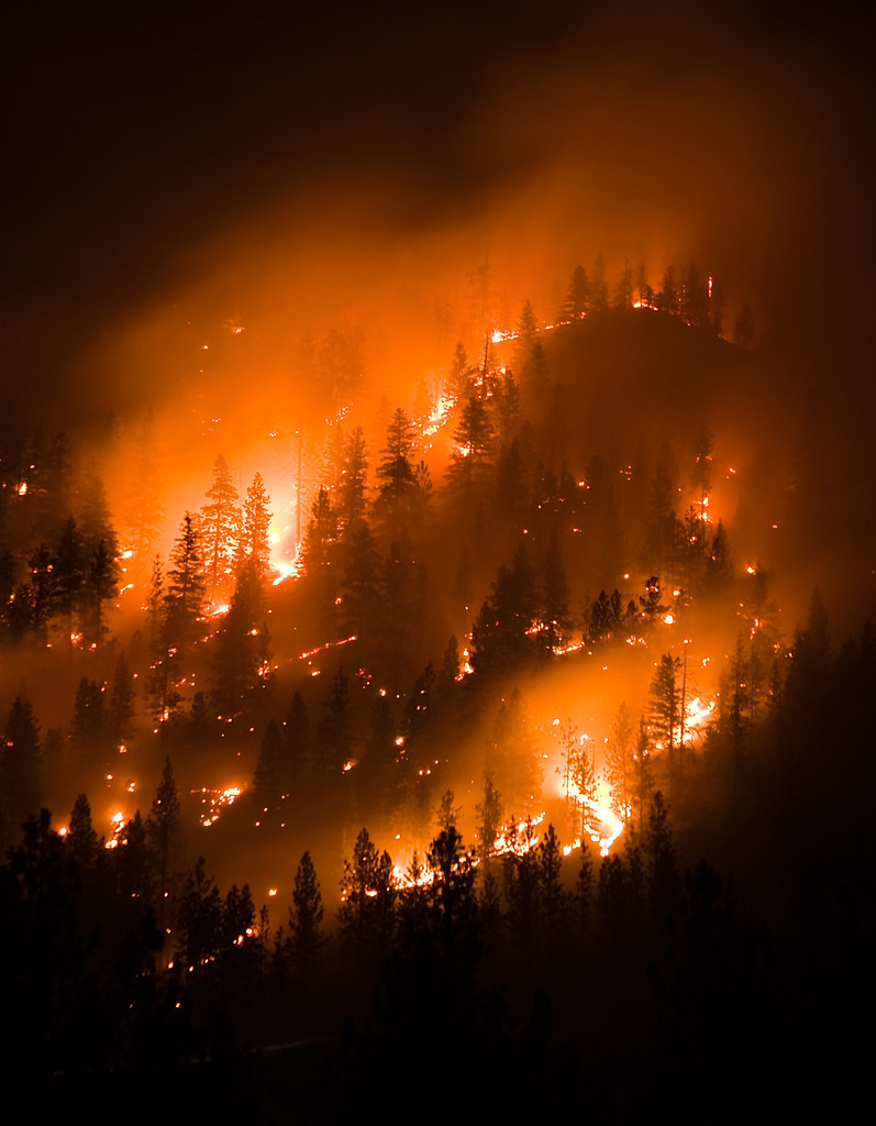 Montana Wildfire Forest Fire A Hillside Burns In Lolo