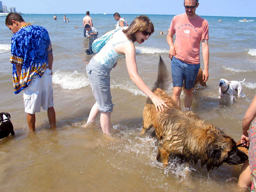 the whitest person alive me petting a big wet dog flickr