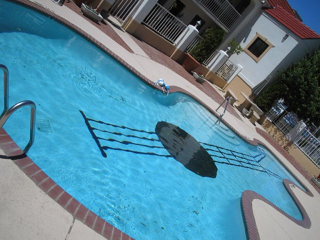 Coolest Backyard Pools Ever : best swimming pool ever  @ days inn graceland (memphis
