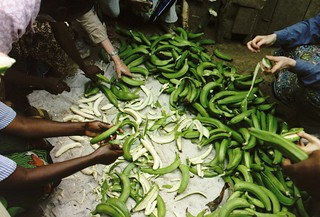 Peeling Plantains | by KneeniG