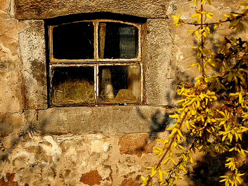 window in the morning sun | by ♦ Peter & Ute Grahlmann ♦