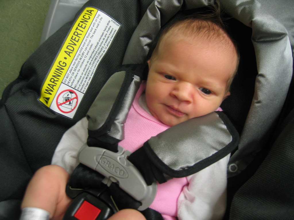 Infant In Car Seat Hoax