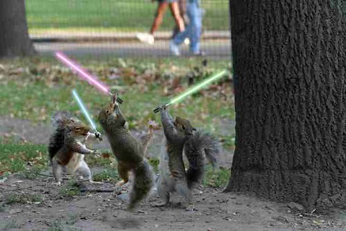 'those' jedi squirrels with lightsabers | by DaveBr