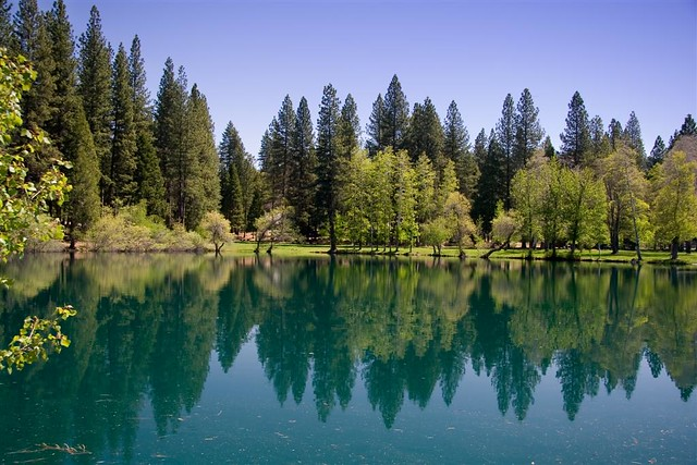 Birch Lake near Hetch Hetchy, CA | This pretty little lake ...