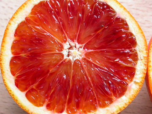 Blood orange | by Nick Saltmarsh