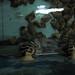 Aquarium Prison Break