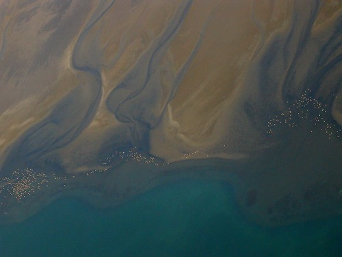20050703 Aerial View of Flamingos on Namibian Coast, Flight Swakopmund to Sossusvlei, Namibia 720 | by Gary Koutsoubis