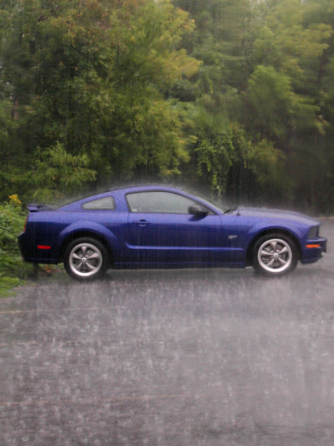 Mustang In The Rain Explore Striatic S Photos On Flickr
