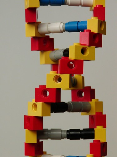Lego DNA | by mknowles