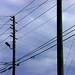 DSC05277-wires