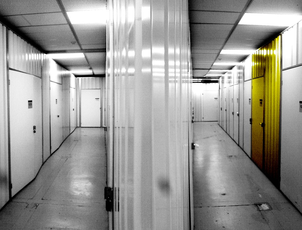 self storage start up business plan essay
