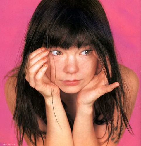Young Bjork Mark Burbey Flickr