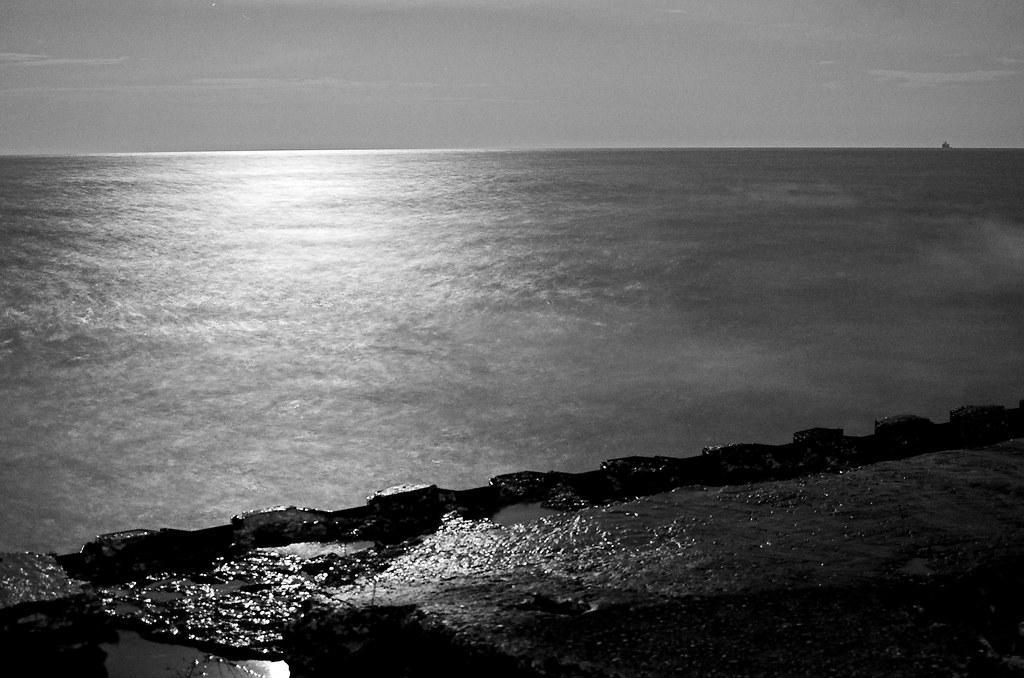 Black And White Night Under Moonlight | At 9 at night ...