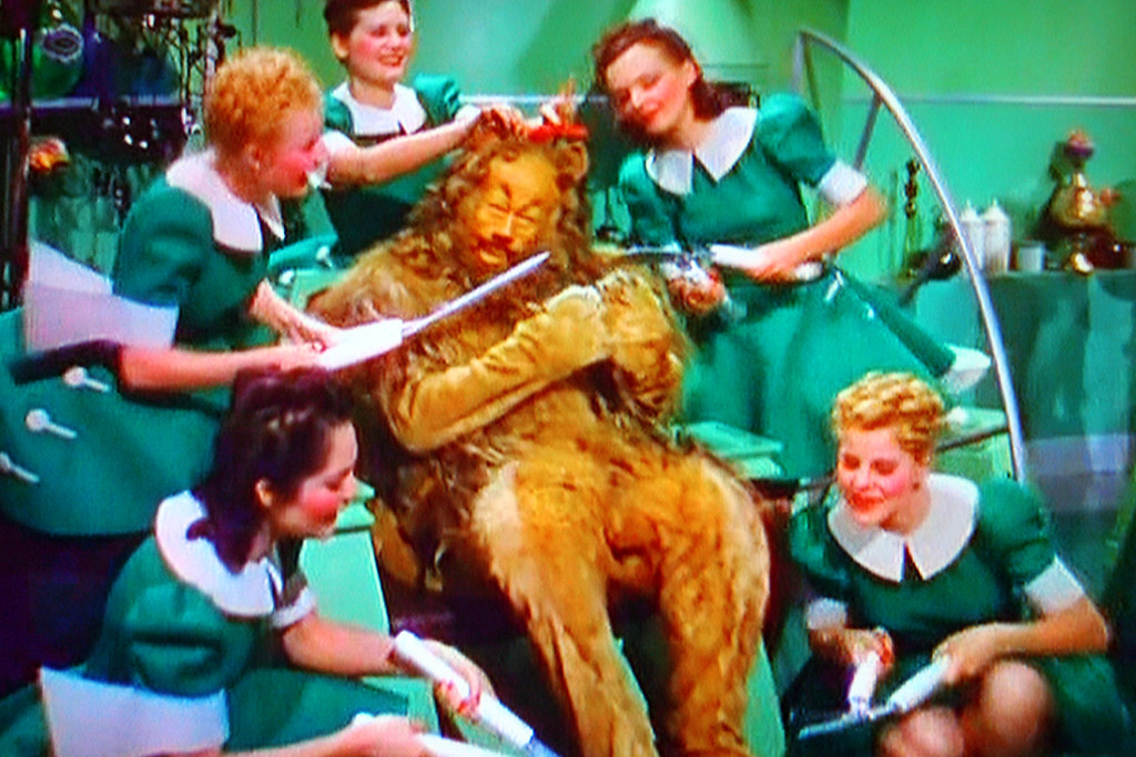Bert Lahr Tv Shot The Cowardly Lion Gets Some Tlc