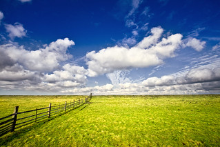 Bordered Pasture | by Jonne Seijdel