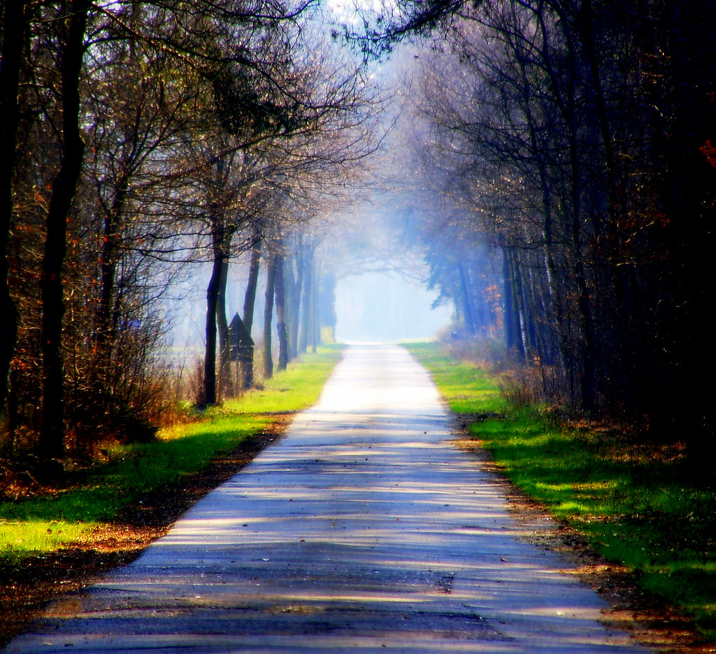 The light at the end of the road | aremac | Flickr At The Roads End