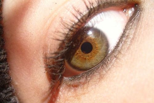 Close up of a hazel eye | famous_ghost | Flickr