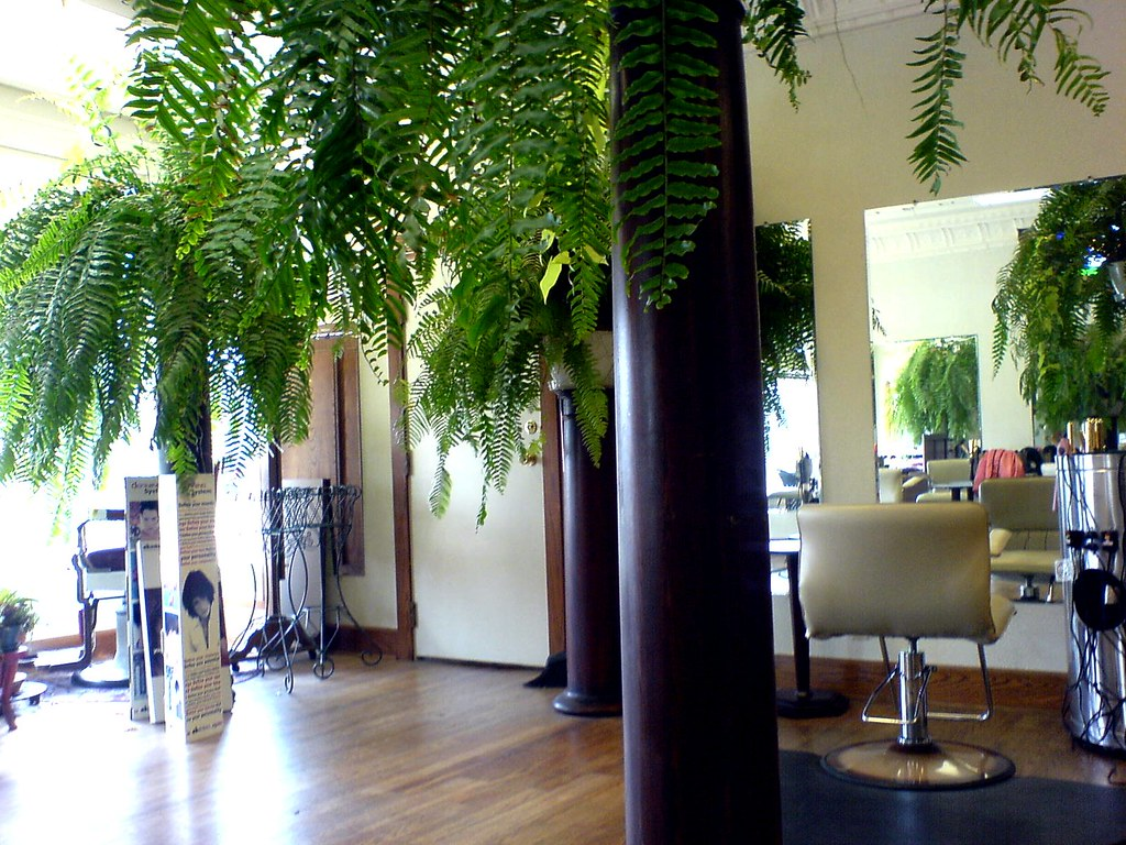 Hair salon was nice was my first time in this place and for Salon 7 places dakar