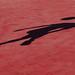 scandalous red carpet