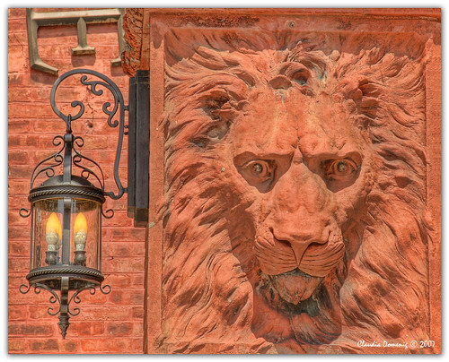 Lantern and Lion | by Fraggle Red