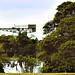 AUS NSW Crane