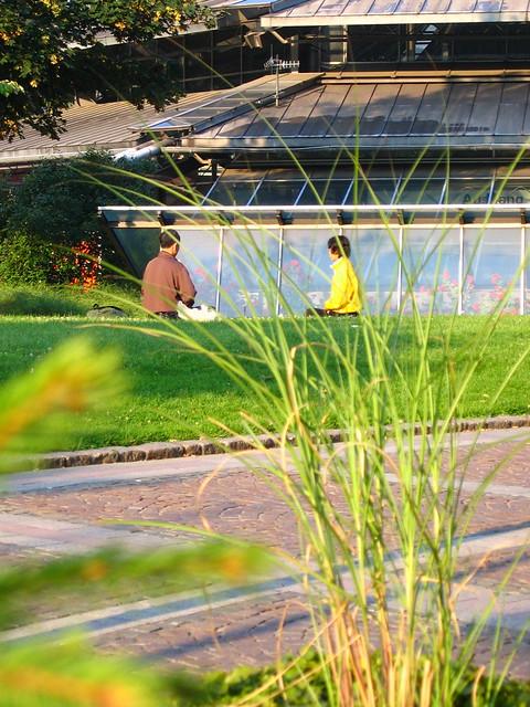 Stadtgarten in dortmund xavier hayes flickr - Stadtgarten dortmund ...
