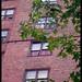 Apartment 8H