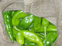 Hatch Chile | by Cosmic Kitty