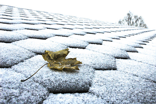 First snow, October 22nd | by @abrunvoll