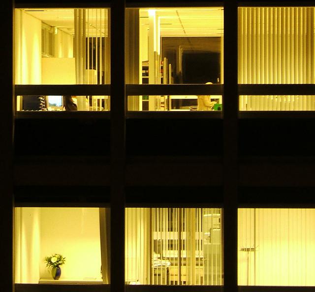 office windows at night   Milo Vermeulen   Flickr