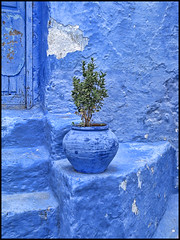 Chaouen, Morocco | by shadowplay