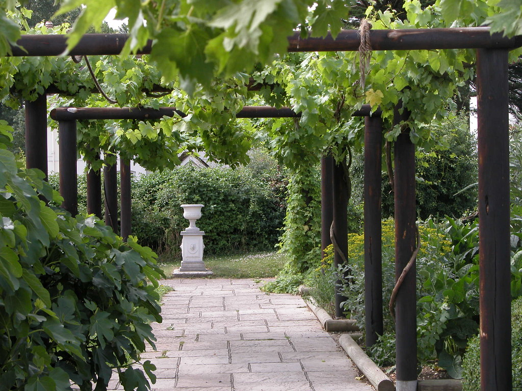 new england landscaping ideas pictures - Vine pergola at Fishbourne
