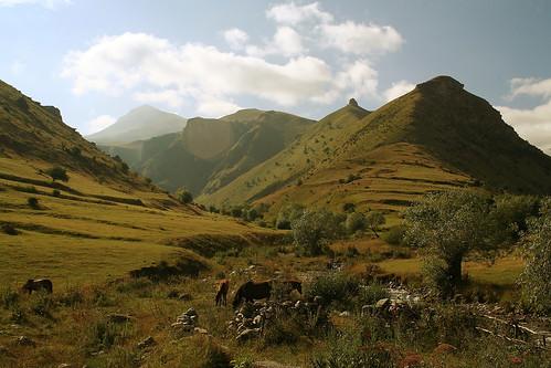 Kosovo Landscape   kosovo landscape, national park sharr ...