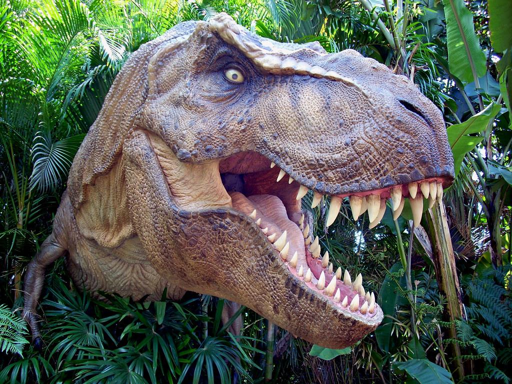 T rex dinosaur photo taken at universal studios jurassic flickr - Dinosaure de jurassic park ...