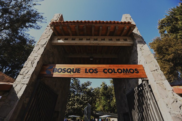 29 Ene 2017 . El Presidente Municipal Enrique Alfaro encabeza la entrega de obras de la intervención integral en el Bosque Los Colomos