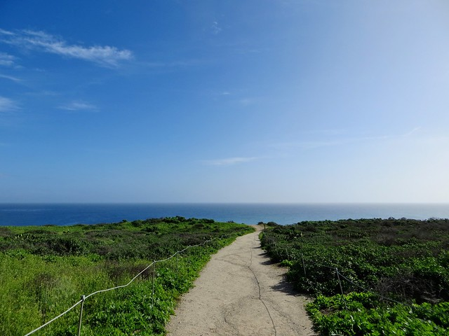 point dume yesterday