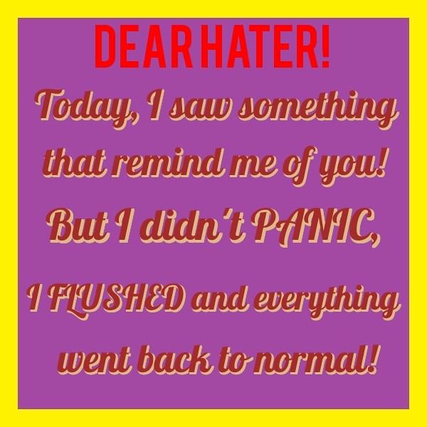 DEAR HATER! Today, I saw something that remind me of you! But I didn't PANIC, I FLUSHED and everything went back to normal!, adapted by BrianMc