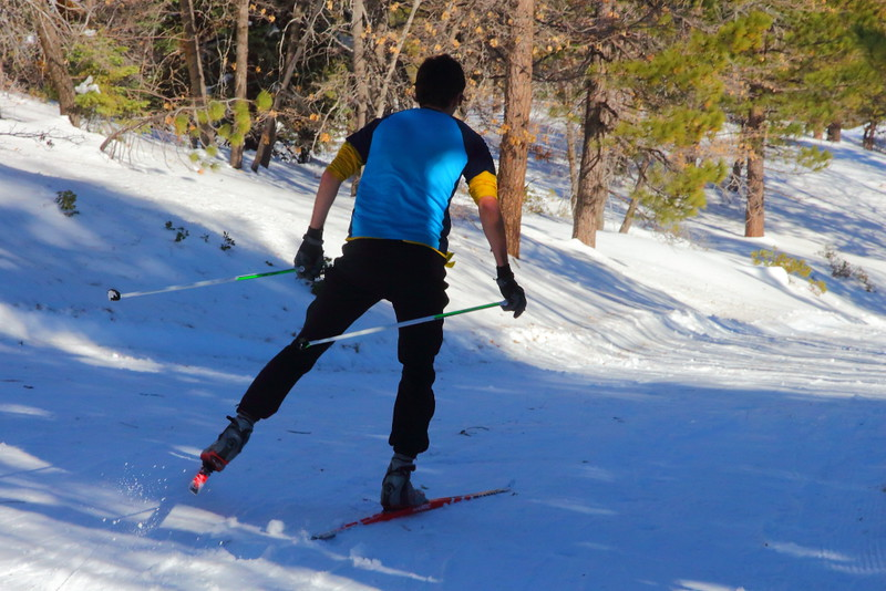 IMG_0742 Skate Skiing