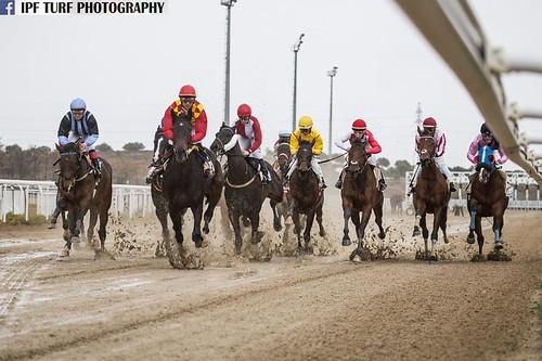 Carreras de caballos temporada de invierno en el hipódromo