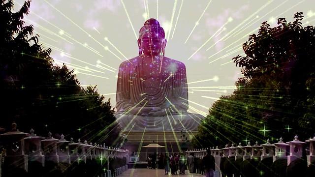 Buddha - Shift Media Creator