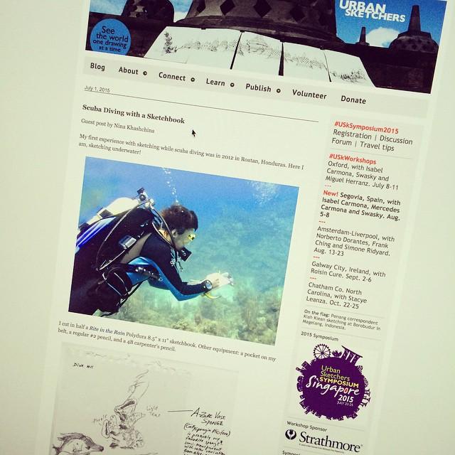 Read about my adventures of sketching under water @urbansketchers today #scuba #scubadiving #underwater #sketchingeverywhere link in my blog - see profile
