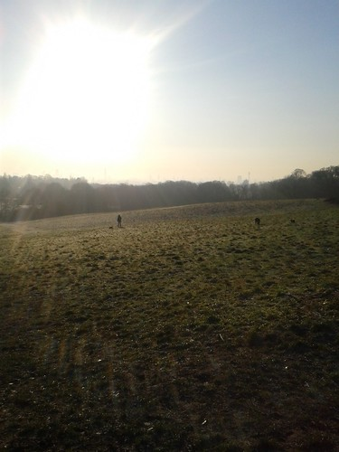 Hampstead Heath Cold Freezing Morning Run