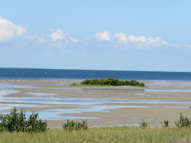 Mudflats (South Padre Island Conv. Center)