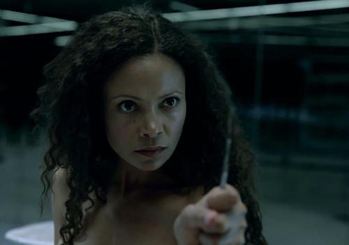 Westworld - TV Series - screenshot 14