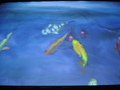 Davey 39 s digi fish davey 39 s fish at ncma breigh for Davey s locker fish report