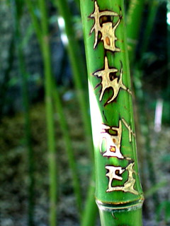 Bamboo Graffiti 2, Beihai Park | by digitalexistence