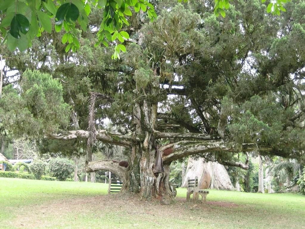 aburi botanical gardens ghana