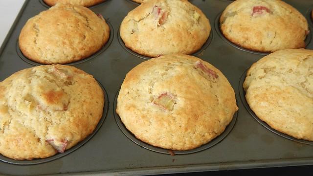 Rhubarb Muffins 12