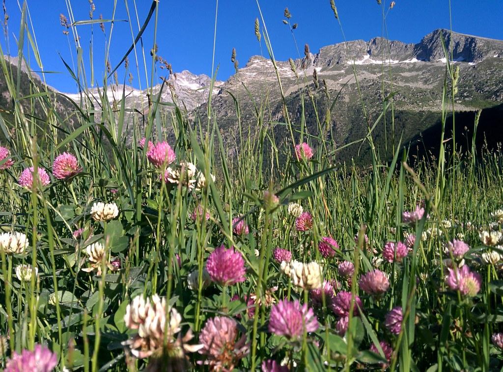 Best of: Val d'Aran