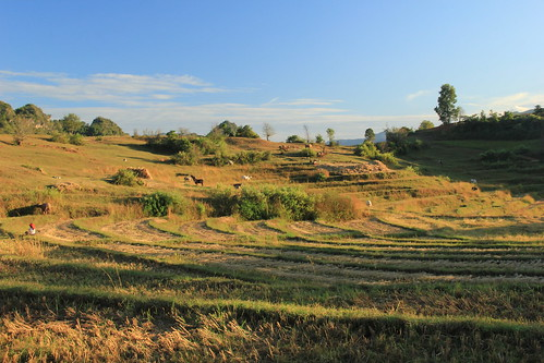 Kalaw to Inle Lake trek